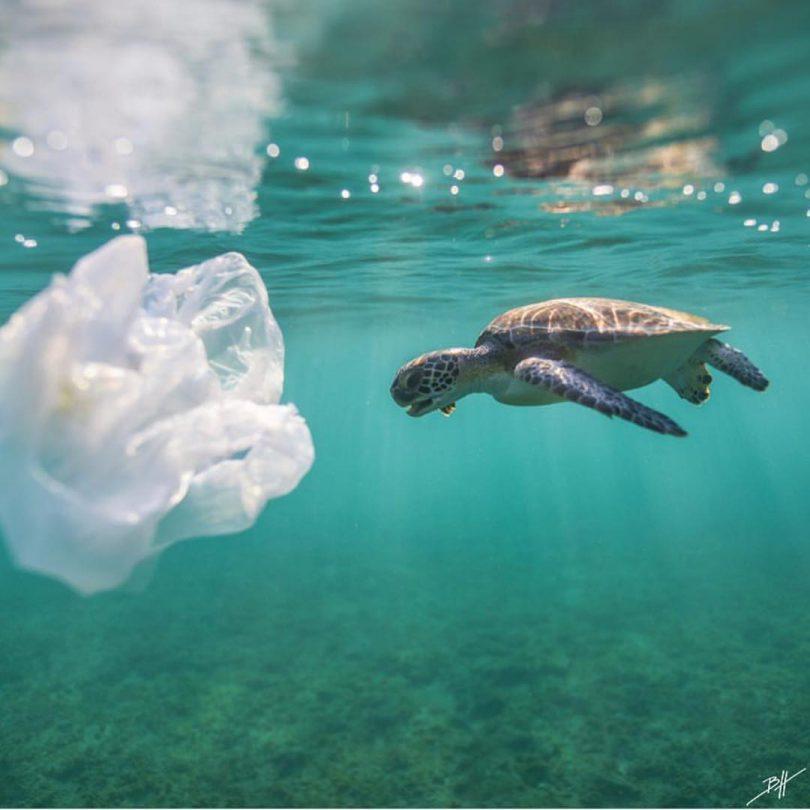 plasticul care ajunge in oceane
